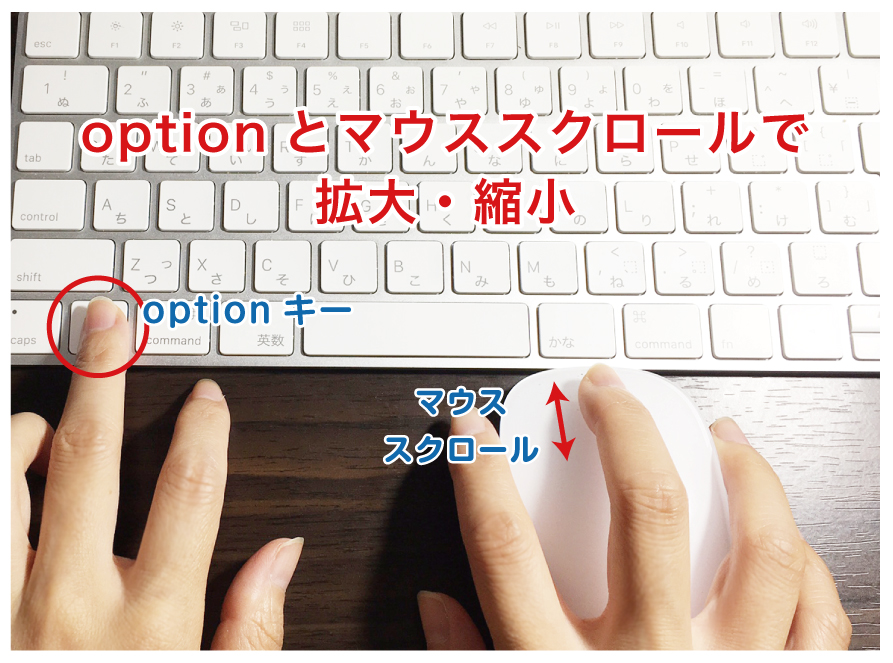 option、マウススクロールで拡大縮小