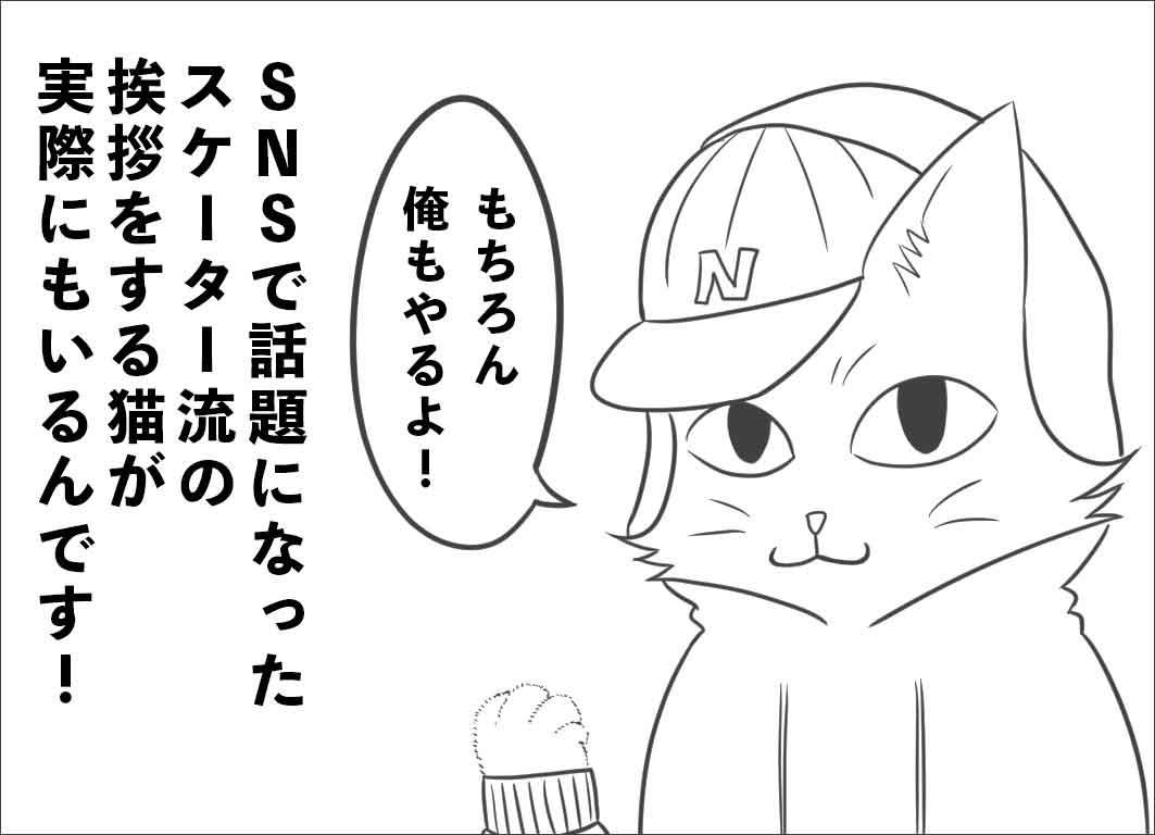 SNSで話題になったスケーター流あいさつをする猫が実際にいるんです!