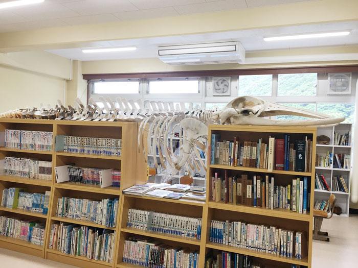 むろと廃校水族館(図書館に骨の標本)